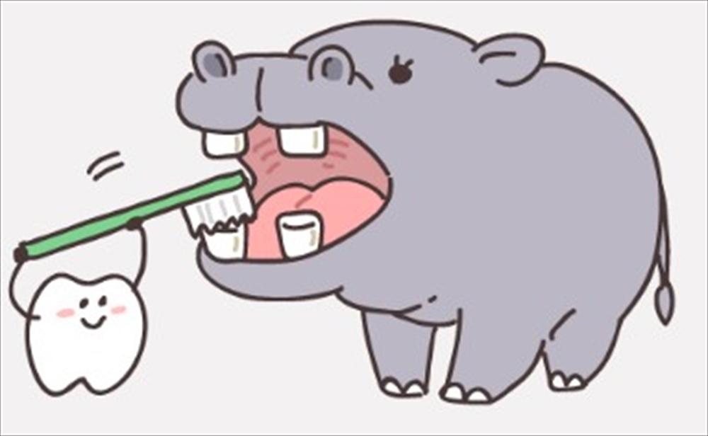 歯医者さんが教える歯みがきの本当のタイミング②
